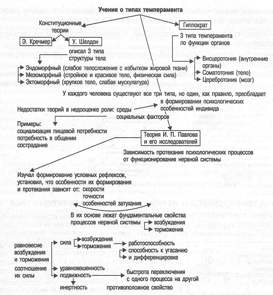 темперамент и его физиологические основы